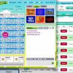 Bingo Online - en bild på en sida.